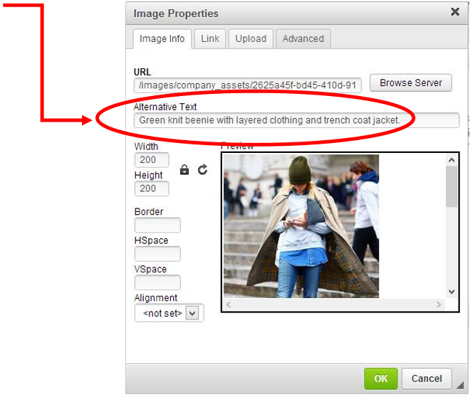 Add Image ALT Text in Image Properties Panel